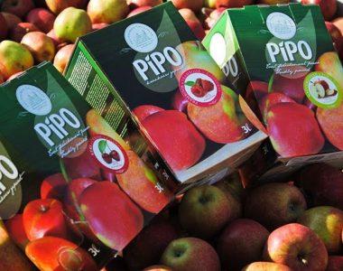 pipo 3l bags appelsap bovenop verse appelen